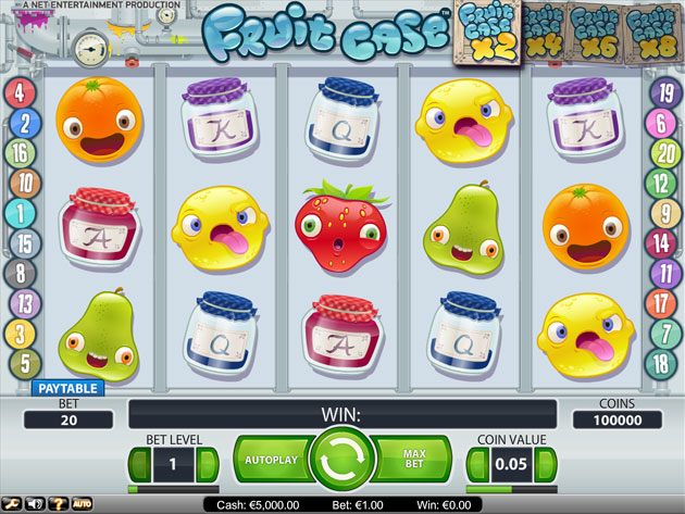 Casino fruit case slot machine games rules
